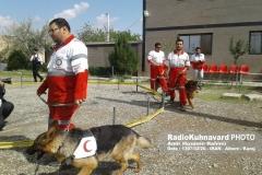 www.radiokuhnavard.ir9543443-19
