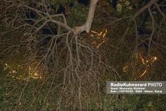 www.radiokuhnavard.ir9586486-28
