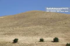www.radiokuhnavard.ir9534564-14
