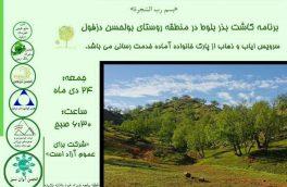 کاشت بذر بلوط در روستای بولحسن دزفول