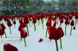 زمستان در بهار ۹۷