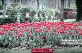 گزارش تصویری هفدهمین نمایشگاه بین المللی گل و گیاه تهران